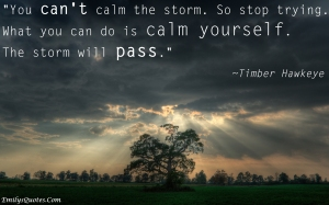 EmilysQuotes.Com-calm-storm-experience-patience-Timber-Hawkeye-choice